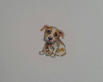"Bulldog puppy miniature painting, Original handmade watercolour painting, Not a print, dog size is 3 x 2.8 cm (1.2 x 1.1"") on A5 paper"