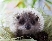 Needle felted hedgehog -MADE TO ORDER- Needle felted animal - Miniature sculpture Handmade Felt toy - Hedgehog as a gift