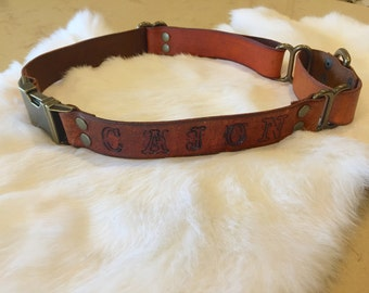 Brown Leather Quick Release Adjustable Martingale Dog Collar