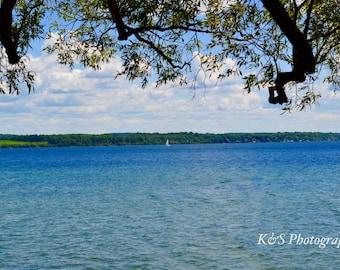 Lake, Sailboat, Nature Photography