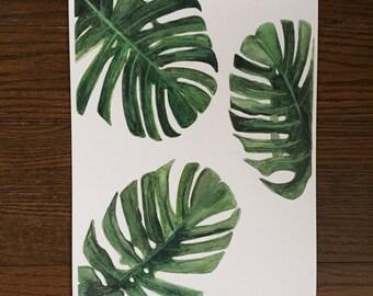 Monstera Deliciosa Watercolour Print