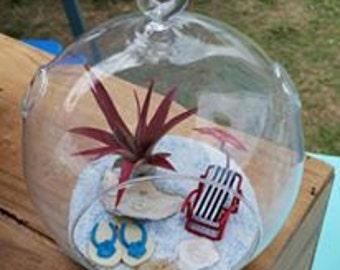 Hanging Globe / Beach Scene  / Flat Bottom / Red Abdita Air Plant / Handmade