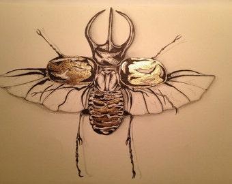 Gold leaf Dung beetle illustration