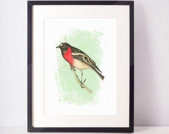 Red bird print bird painting bird illustration bird art print bird watercolor instant download digital print