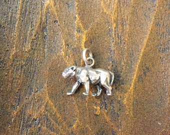 Panther Silver 925 Charm