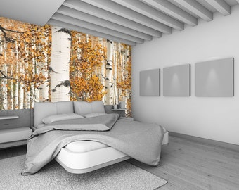 Autumn Birch Trees - Removable Wall Mural - Self-Adhesive Repositional Fabric Wallpaper - Full Sizes