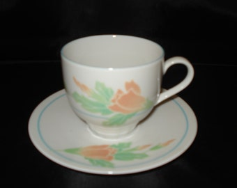 Denby germany cup & saucer