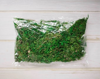 Dried green moss Photographers display box filling material  Terrarium Home Decor