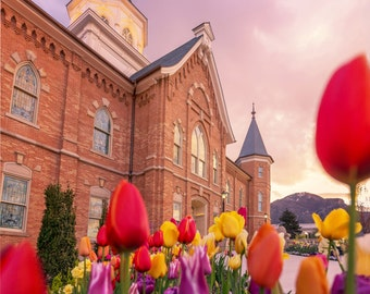 Provo City Center LDS Temple with Tulips