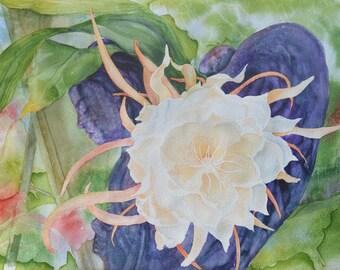 Night-blooming Cereus Note Card