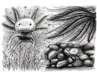Art Print, Axolotl Art, Giclée Print, 8x11, 5x7, Wall Art, Axolotl Print, Axolotl Illustration, Axolotl Gift, Axolotls, Axolotl Print