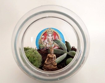 "DIY Meditative Succulent & Air Plant Garden ""Mini"" - Customized Crystals for Creativity, Luck, Positivity, Tranquility"