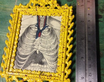 Rib cage painted frame