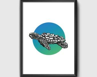 A5 Turtle Illustration