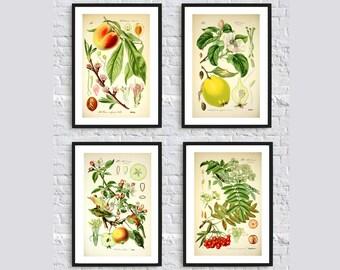 kitchen art etsy. Interior Design Ideas. Home Design Ideas
