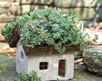 Miniature Dollhouse FAIRY GARDEN ~ Tabby Cottage - Fairy House