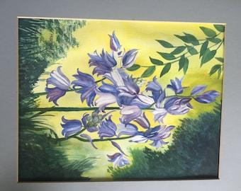 Hopeful Hyacinth