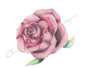 A Realistic Colour Rose Tattoo