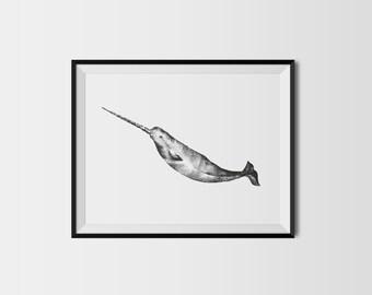 Stippled Narwhal A5 Nautical Dot Work Art Print