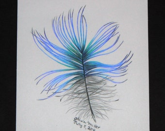 Blue and green hand-drawn Feather
