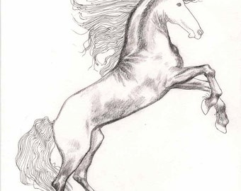 Small HORSE DRAWING 8X10  small drawing, line drawing, ink horse drawing, modern drawings, horses, sketch, original technique, wall art