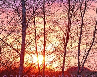 Sunset Photo Sky Photography Instant Download Print Download Printable Art Printable photo
