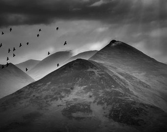 FLYING HOME (Lake District)