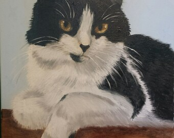 Example of a Cat portrait