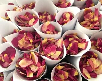 Celebratory REAL Petals