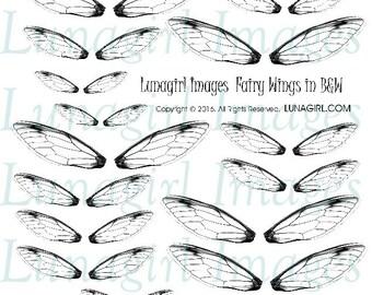 FAIRY WINGS, Black & White, digital collage sheet, Download, printable ephemera, dragonfly fairies faerie, fantasy magical embellishment, BW