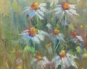 Field of DAISIES Nantucket Wildflowers 6x6 Original Pastel Painting