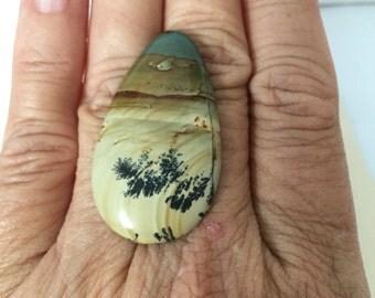 Succor Creek Scenic Dendrite Agate