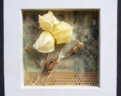 RESERVED.......Encaustic art, wax art, beeswax collage nature study 1, encased in deep frame, mixed media art, dimensional art