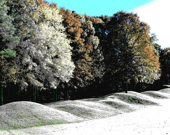 Spring Snows I, Print.Gentle Slopes, Trees in Bloom, Blue Skies, Natural Order, Free U.S. Shipping
