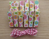 Summer Flowers Clips w Twine for Photo Display - Chunky Little Clothespin Set of 12