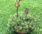 BIRD ART Rusty Metal Art Sculptures  set of 2  by Artist John Challand  Bird Sculpture Art Iron Sculpture  Original Metal Outdoor Sculpture