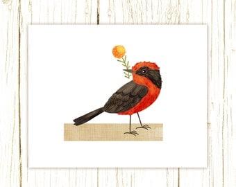 Vermilion Flycatcher Art Print -- bird art 52 birds stephanie fizer coleman illustration