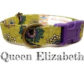 "Lime Green Purple White Lace Girl Dog Collar - Organic Cotton - Antique Brass Hardware - ""Queen Elizabeth"""