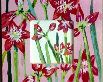 Painted Frame Amaryllis