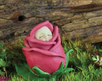Rose Bud Baby - June