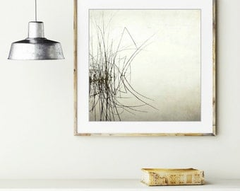 """Black and white photography lake reed grasses minimal pale gray white wall art water reflection 12x12  """"Palindrome"""""""