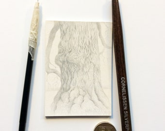 Original Silverpoint detail tree drawing  ACEO