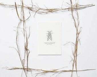 Leopard Moth Print