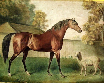 George Stubbs Horse Sheep Rare On Canvas Museum Quality Ready to Hang Dungannon