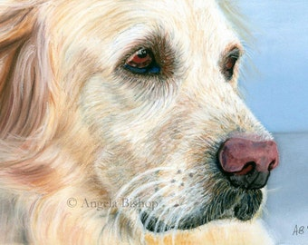 Golden Retriever Painting Print, Dog Print, Pastel, Pet, My Best Friend, Reproduction, Fine Art, Nature, Realism, 5 x 7, Pastel Painting