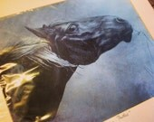 FUNDRAISING ITEM - horse drawing/portrait/print - wall art - mounted