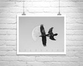 Bird in Flight, Raven Art, Bird Photography, Black and White, Art Photography, Moon Art, Moon Picture, Wall Art, Wildlife Art