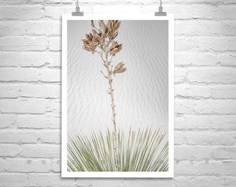 New Mexico, Art Print, Desert Picture, Minimalist Photo, Sand Dunes, White Sands, Desert Photography, Yucca, Vertical Art, Elegant Art, Gift