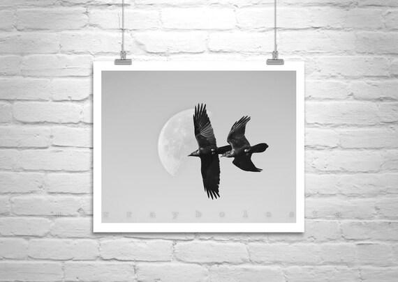 Black and White Photography, Bird in Flight, Raven Art, Bird Photography, Moon Art, Moon Picture, Wall Art, Wildlife Art