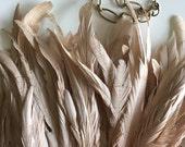 MIRAGE COQUE TAIL / Cream, Corn Silk  /  844